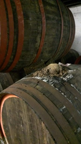 Fermentation in a very old barrel.