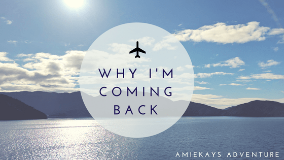 why i m coming back amiekay s adventure