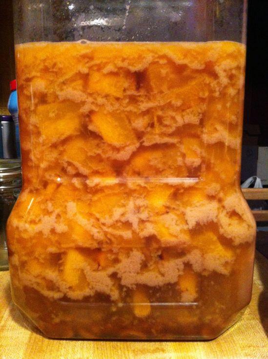 Pumpkin butterscotch liquer