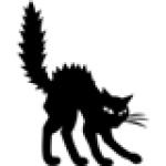 Illustration du profil de flype