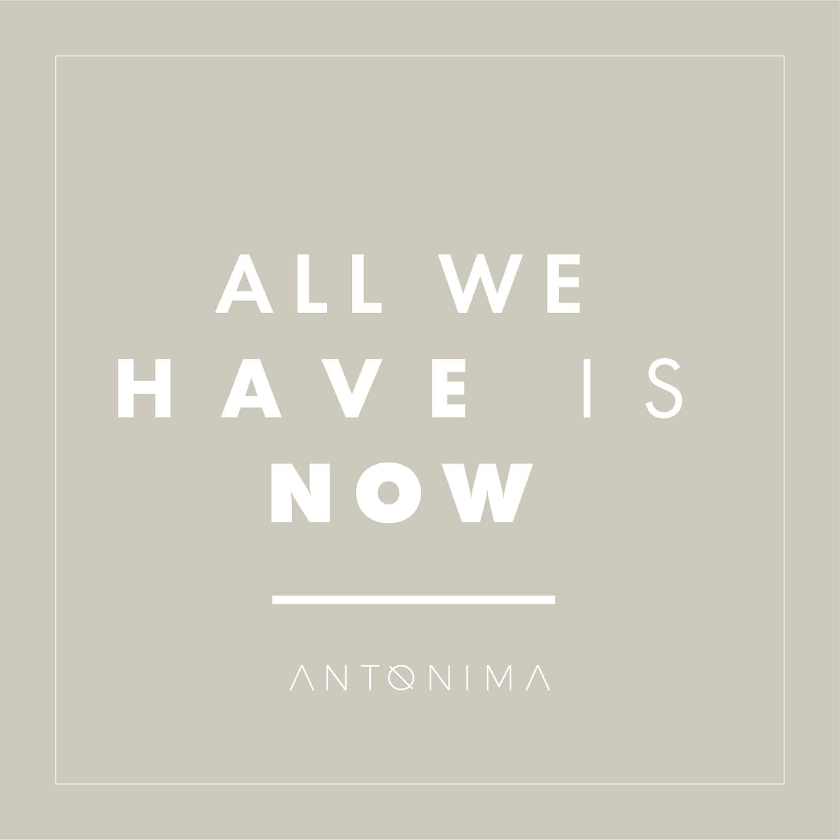 antonima plantilla_junio-04