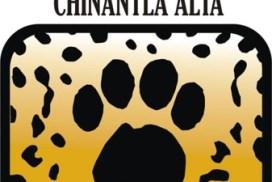 Unión de Apicultores de la Chinantla Alta (CORENCHI)
