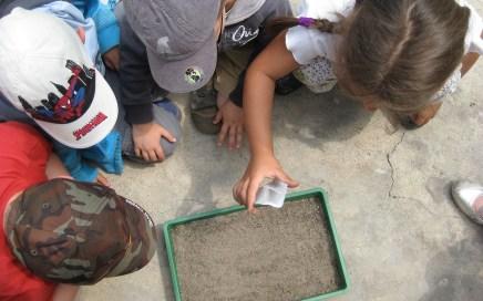 Educación ambiental: aprendizaje para la vida