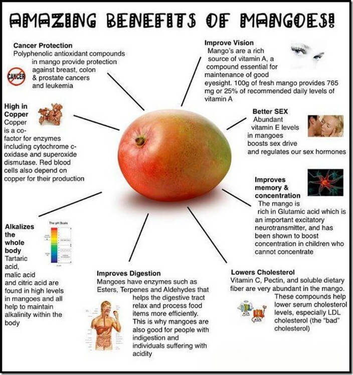 Why You Should Eat Mangoes