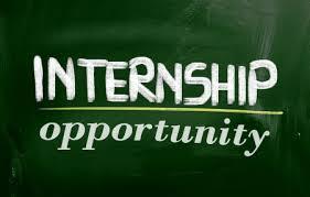 Internship opportunity at AMIR