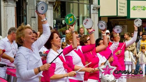 2013 – Sambafestival Nijmegen