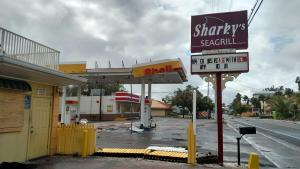 Shell post Irma