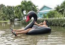 King tide floater