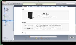 Apple iPad ICCID Number