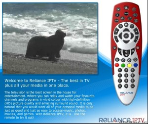 Reliance IPTV Review