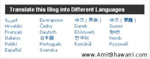 Free Wordpress Blog 22 Languages Translation