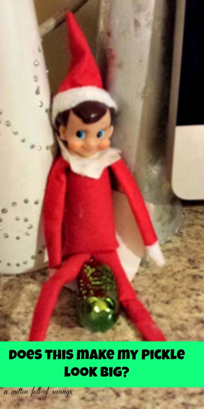 Elf shelf naughty on pictures the