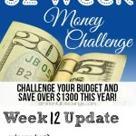 52 Week Money Challenge – Ways To Save Money Week 12