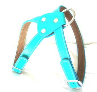 the cool puppy harness
