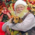 12 Days of Cheer // Ammo the Dachshund visits Santa 2012
