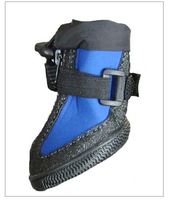 Friday Fetch // All Dog Boots // Ammo the Dachshund