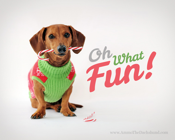 Image result for happy holidays dachshunds