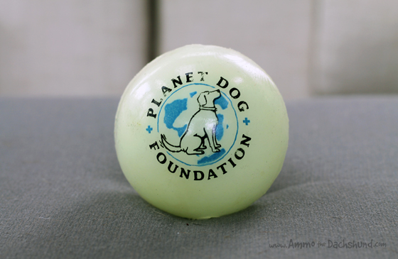 planet dog glow for good ball ammo the dachshund