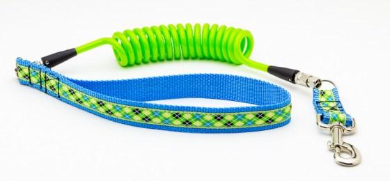 Friday Fetch: Good Dog Leash Customizable Coil Leash // Ammo the Dachshund