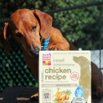 The Honest Kitchen Dehydrated Pet Food Review + Giveaway