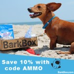 Summer Barkbox Ad - Coupon Code