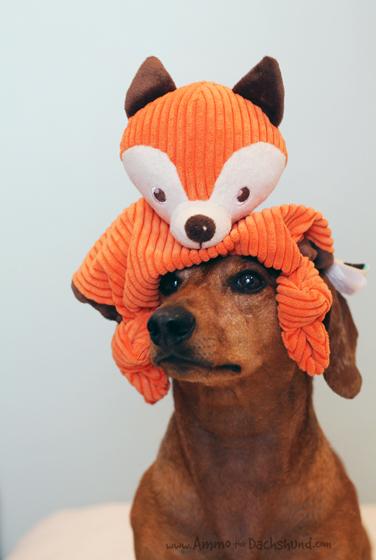 Martha Stewart Fox Dog Toy