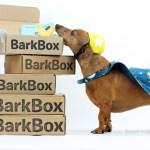 Birthday Week: Enter to Win a Free Barkbox Subscription