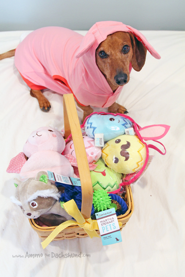Easter Treats + A Giveaway with Martha Stewart Pets