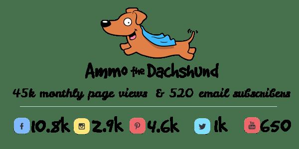 Ammo the Dachshund Blog Stats