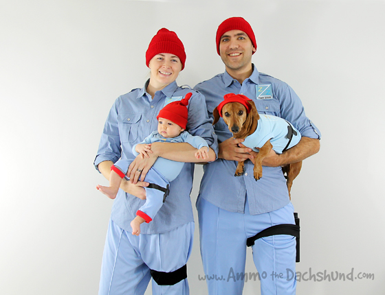 Team Zissou Dog Halloween Costume Life Aquatic