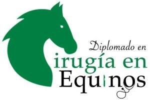Diplomado Cirugía en Equinos AMMVEE