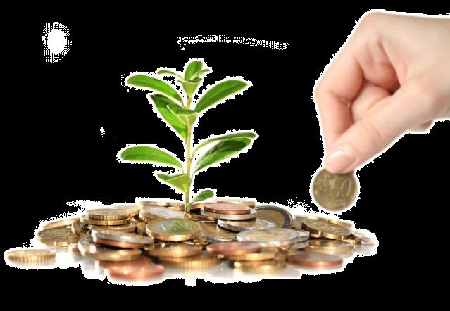 كيفية الحصول على تمويل مالي لشركتك الناشئة