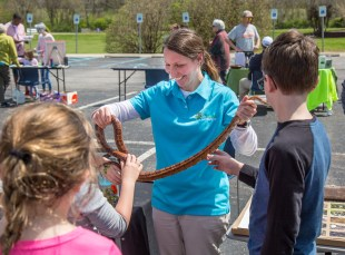 Missy Littrell with Inter-County Energy draws a crowd as she holds up a corn snake, a native Kentucky species.