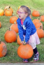 Robin Hart/robin.hart@amnews.com Kyleigh Dedman struggles with her large pumpkin after selecting what she saw as the perfect one.
