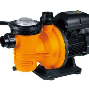 Elettropompa per Piscina GLONG VSFCP-1100S2 - Hp1,5 kW 1,1-0