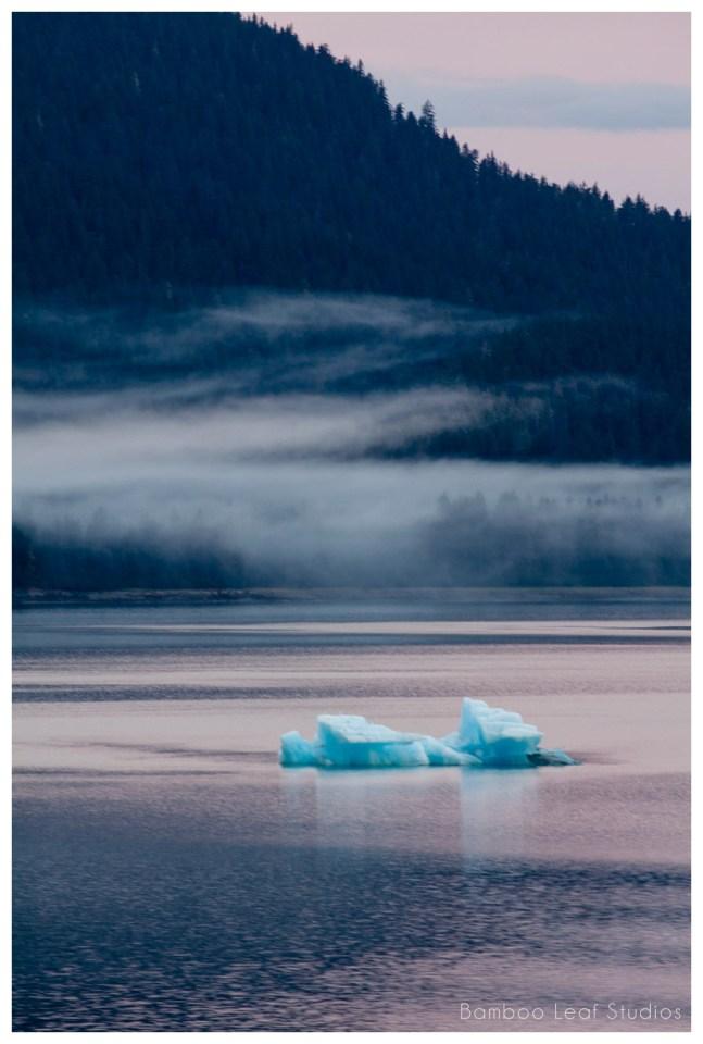 Alaska Cruise Vacation