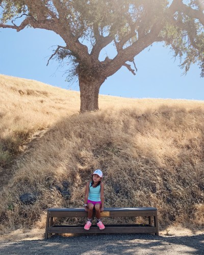 Hike Pena Adobe – Solano County Living
