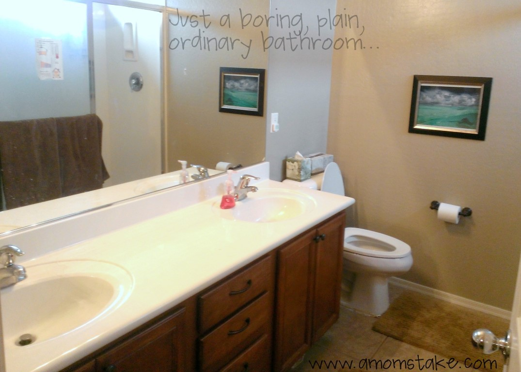 Cheap Bathroom Makeovers Stylish Eve