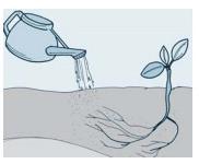 Pembahasan tentang gerak pada tumbuhan dan contoh soalnya