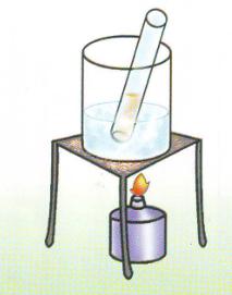 Percobaan Sains Sederhana Uji Glukosa pada Makanan (Uji Benedict)