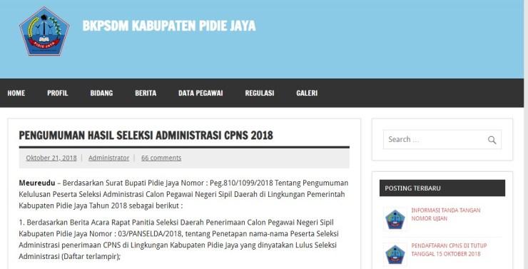 Ketentuan dan Jadwal Sesi Ujian SKD CPNS Kabupaten Pidie Jaya Tahun 2018