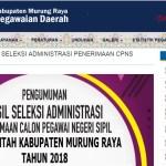 Jadwal dan Lokasi Tes Kompetensi Dasar CPNS Kabupaten Murung Raya Tahun 2018