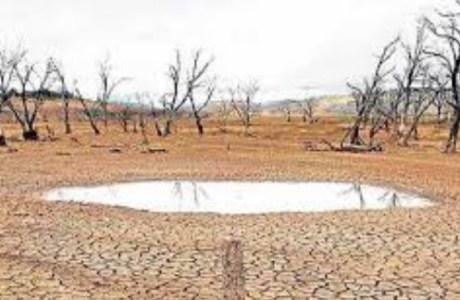 Fenomena El Nino dan Dampaknya Terhadap Curah Hujan di Indonesia