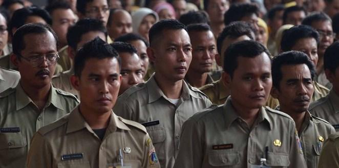 Hasil SKD dan Peserta Lulus SKB CPNS 2018 Kabupaten Pidie