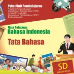 Download Buku Materi Guru SD Program PKP Berbasis Zonasi 2019