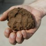 Ciri-ciri Tanah Liat, Sifat, dan Contoh Produk Yang Dihasilkan
