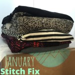 January Stitch Fix, #8.