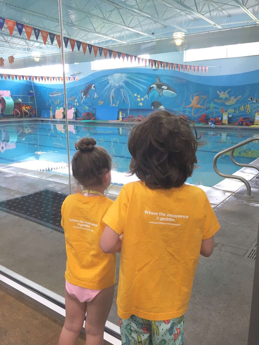 goldfish swim school water safety