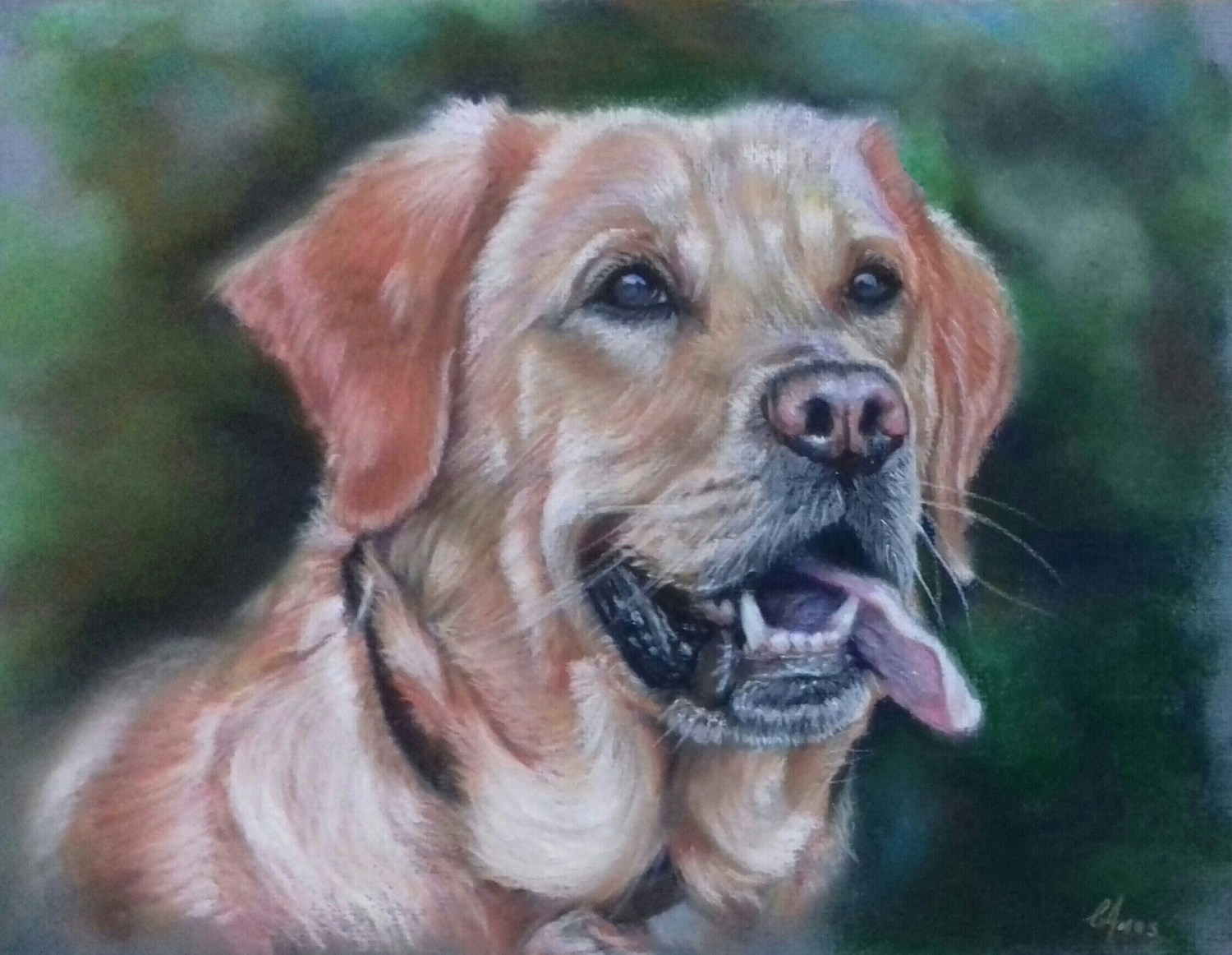 Golden retriever - Pastels
