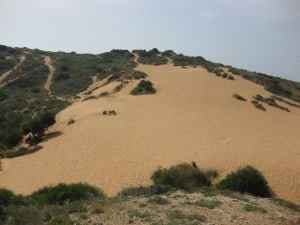 Sand Dune in Poleg Nature Reserve